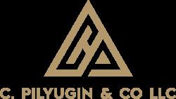 C. PILYUGIN & CO LLC